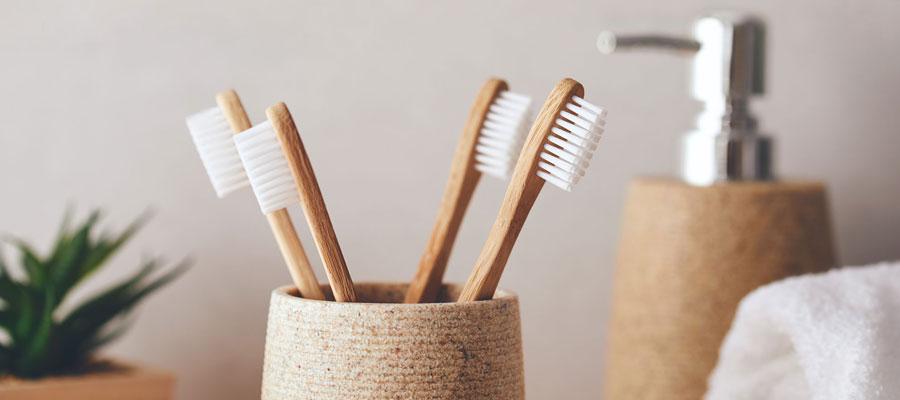 Brosse a dent écologique